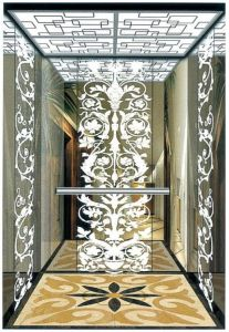 Home Hydraulic Villa Elevator with Italy Gmv System (RLS-248) pictures & photos