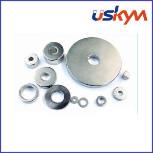 N52 Ring Neodymium Magnets (R-006) pictures & photos