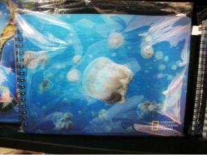 2015 Blue Nuken 3D Notebook for Gift pictures & photos