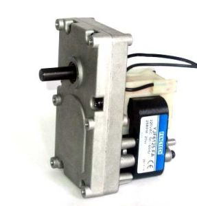 Roaster Motor