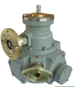 Flow Meters for LPG Dispenser