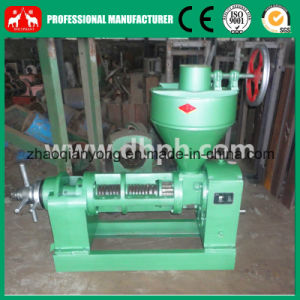 Hot Sales Screw Oil Press, Edible Oil Press (6YL-95) pictures & photos