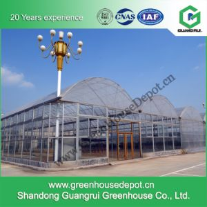Multi-Span Tunnel/ Arched Film Greenhouse pictures & photos