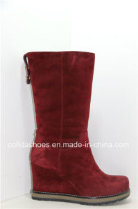 Trendy European Women Warm Leather Boots for Fashion Lady pictures & photos