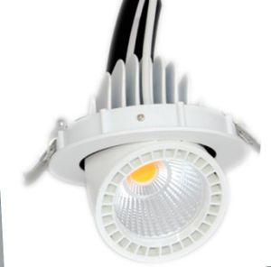 10W 15W Small LED Trunk Ceiling Light pictures & photos