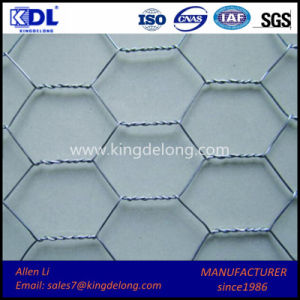 Galvanized Hexagonal Wire Netting Mesh pictures & photos