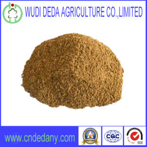 Hot Sale Meat Bone Meal Animal Feed pictures & photos