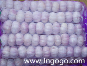 New Crop Fresh High Quality Normal White Garlic pictures & photos