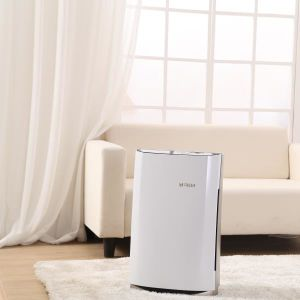 HEPA Ion Air Purifier Ionizer Air Filters 7099h pictures & photos