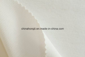 Waffle C/P/Sp 75/20/4, 260GSM, Knitted Fabric for Lady′s Garment pictures & photos