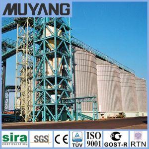 Soybean Storage Silos