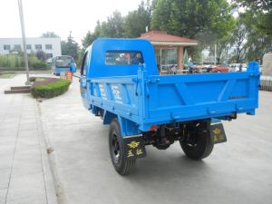 Cargo Closed Diesel Motorized Three Wheel Truck with Cabin From China pictures & photos