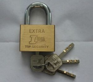 50mm New Square Brass Blade Nickel Plated Padlock (BB501) pictures & photos