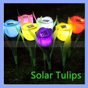 Portable 2V 400mA Solar Power Tulip Lamp Flower Lawn Light pictures & photos