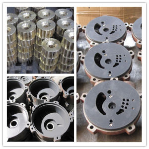 High Quality Water Ring Vacuum Pump with Flange Port pictures & photos