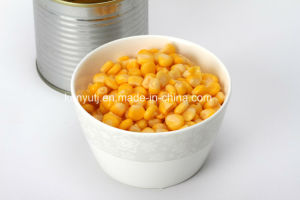 Canned Sweet Kernel Corn with High Quality pictures & photos