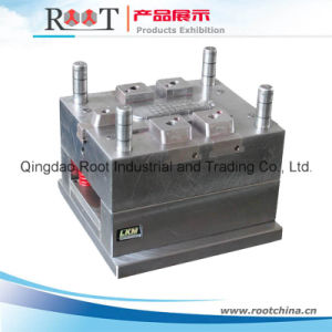 Plastic Mold/Plastic Mould. Multi Cavity Injection Mold pictures & photos