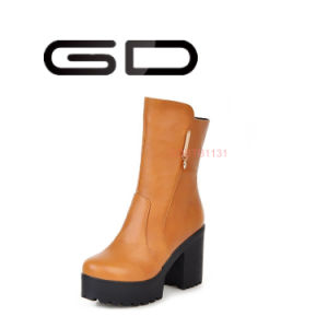 Women Winter Fashion Platform Middle Chunky Heel Boots for Women pictures & photos