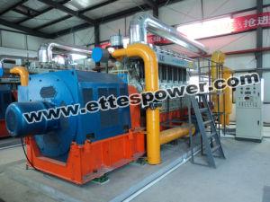 500kw/625kVA Biomasss Generating Set