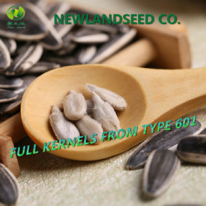 2016 New Type 601 Cpmpentitive Price Sunflower Seeds for Human pictures & photos