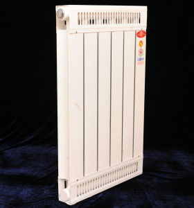 Wall-Hung Gas Water Central Aluminum Radiator pictures & photos