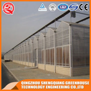 Agriculture Steel Structure Polycarbonate Sheet Greenhouse for Flower pictures & photos