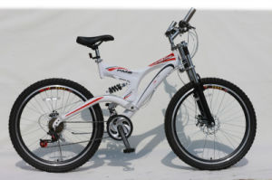 Factory Hight Quality Mountiain Bike (HC-MTB-2626) pictures & photos