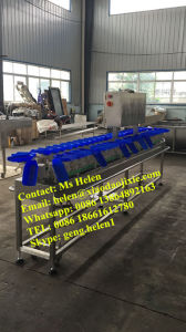 Weight Grader/ Weighing Classifier/ Weight Sorter Machine for Shrimp and Seafood pictures & photos