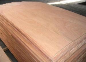 Engineered Wood Veneer /White Color Veneer with Best Price pictures & photos