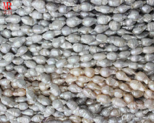 Baroque Pearl Strands pictures & photos