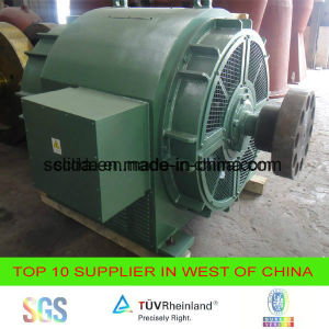 Brushless Generator for Hydro Power Plant 1MW pictures & photos