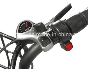City Ebike with Fat Tire Cheap Price Lmtdn-01L pictures & photos
