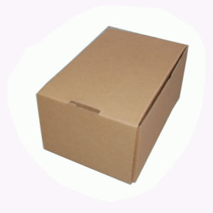Small Paper Packaging Box Fp600050 pictures & photos