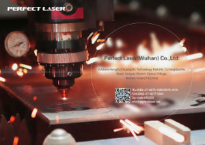 Best Price Metal Steel Fiber Laser Metal Cutter pictures & photos