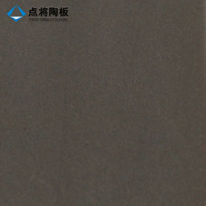 Decorative Soundproof Terracotta Tile for Outdoor Wall pictures & photos