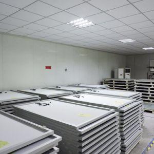Tier 1 World Famous Brand Wholesale Price Yingli Solar Panda 270 W pictures & photos