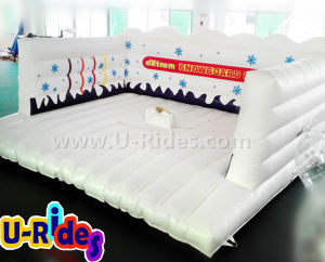 Snow Simulator Inflatable Surfboard Games Mechanical pictures & photos
