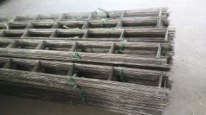 Hot Dipped Galvanized Welded Wire Mesh pictures & photos