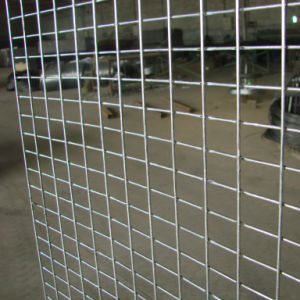 1*1 Stainless Steel Welded Wire Mesh for Construction and Industry pictures & photos