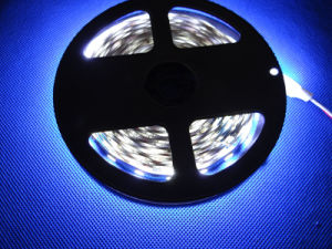 China Factory Dircetly Sale 5050 LED Flexible Strip pictures & photos
