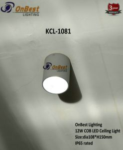 Aluminum COB LED 12W LED Ceiling Light with Honey Comb pictures & photos