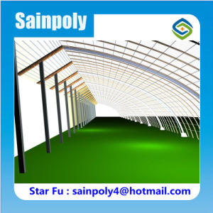 Sainpoly Brand High Quality Solar Greenhouse for Eggplant pictures & photos