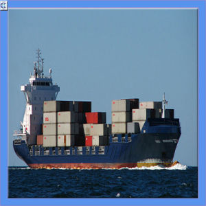International Logistics From China to All Over The World pictures & photos