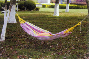 Camping Swing Hammock Beach Swing Hammock pictures & photos