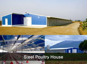 Light Steel Structure Chicken Farm (PCH-7) pictures & photos