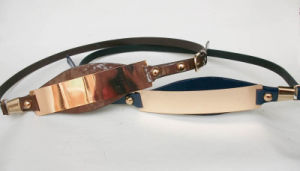 PU Fashion Belt (FL-0691B)
