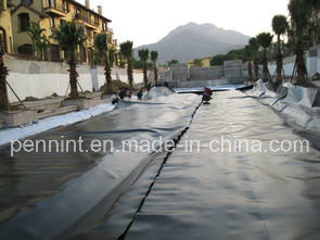 Cheap Fish Farming Black/Blue HDPE Pond Liner HDPE Geomembrane pictures & photos