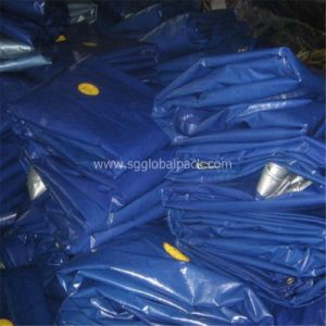 Chinese Truck Cover blue PE Tarpaulin pictures & photos