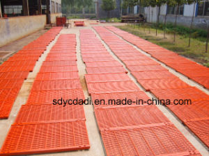 Brand New High Quality Pig Cast Iron Floor with High Quality Farrowing Crate Floor pictures & photos