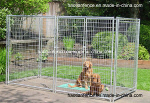 Heavy Duty Galvanized Welded Dog Enclosures pictures & photos